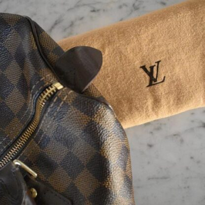 Louis Vuitton Speedy Damier Ebene