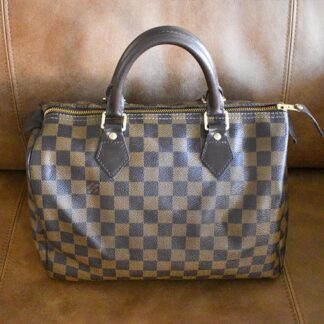 Louis Vuitton Speedy Damier Ebene